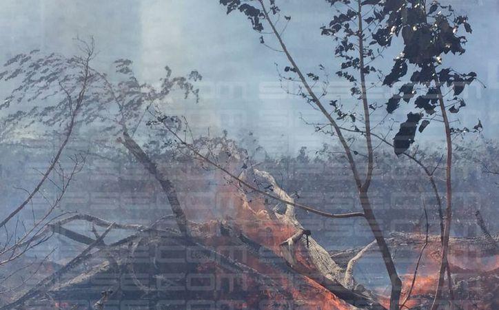 Las autoridades desconocen qué provocó el incendio. (Luis Soto/SIPSE)