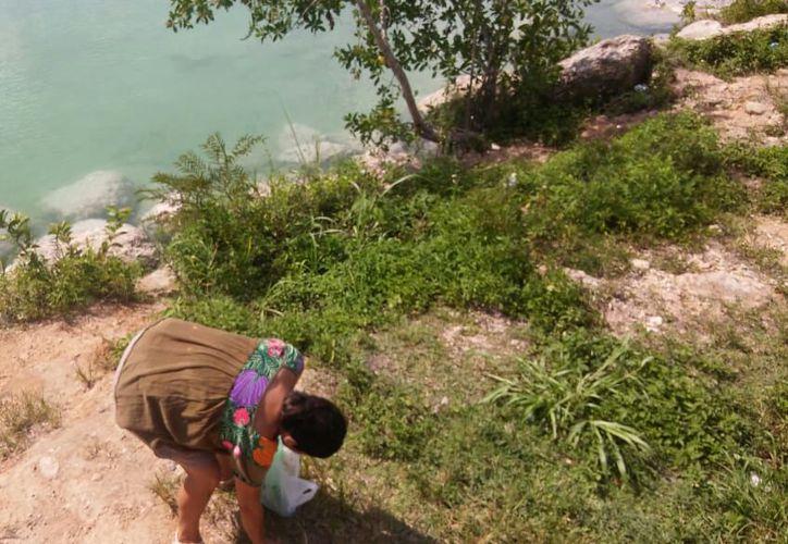 Este fin de semana hay convocatorias para limpiar la bahía de Chetumal y el estero de Chac. (Cortesía)