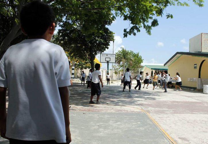 Desde que el centro se abrió, sí han tenido acercamiento al menos con 20 escuelas en ambos turnos. (Tomás Álvarez/SIPSE)