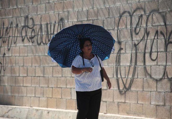 Para este jueves y viernes se espera un clima caluroso en Yucatán con lloviznas. (SIPSE)