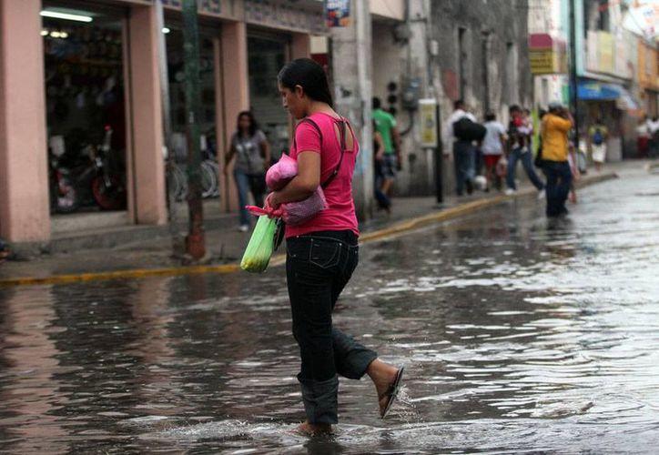 Un chubasco bañó ayer el Centro de la ciudad y propició inundaciones en algunos puntos. (Christian Ayala/SIPSE)