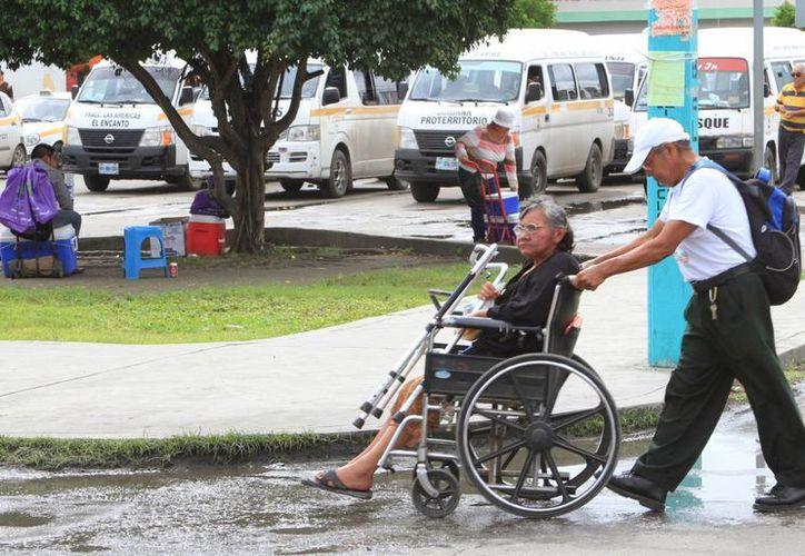 """Actualmente el padrón de """"65 y más"""" está conformado por 32 mil adultos mayores. (Ángel Castilla/SIPSE)"""