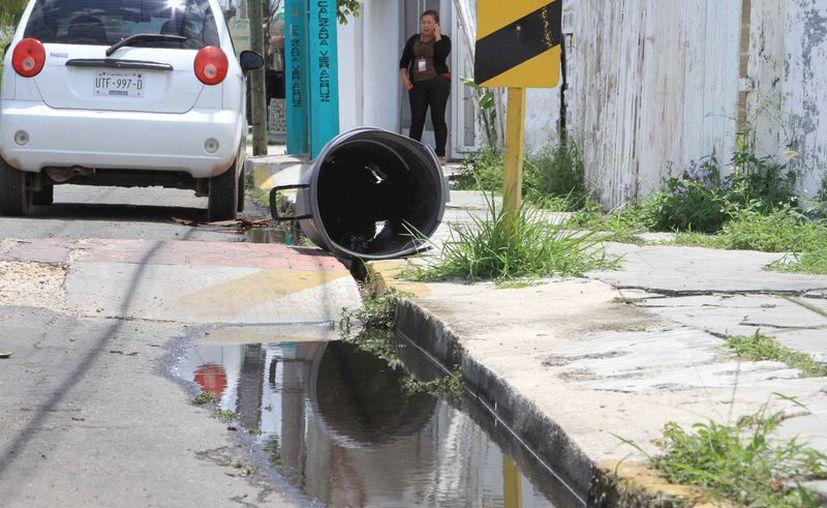 Exhortan a la población mantener limpios los patios y azoteas para evitar la acumulación de agua que es donde se producen los moscos. (Joel Zamora/SIPSE)