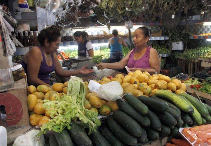 Quintana Roo cuenta con más de dos mil hectáreas de siembra. (Tomás Álvarez/SIPSE)