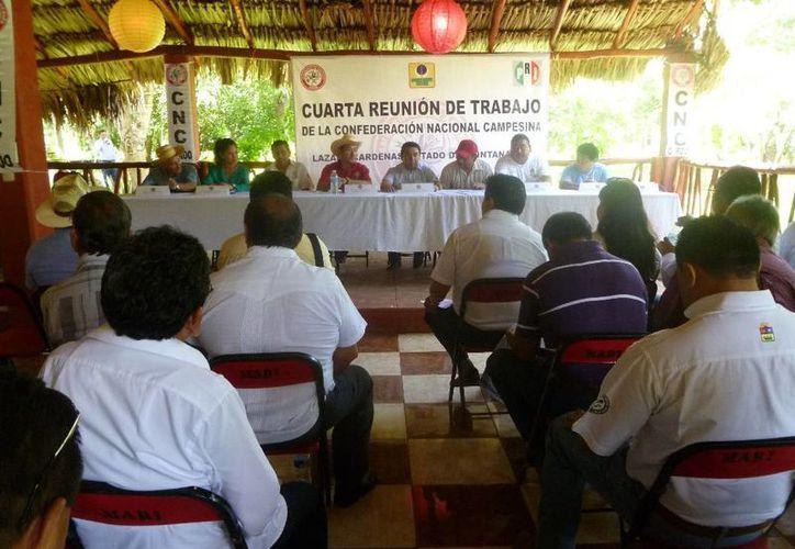 Reunión en conocido local de la colonia Xamán Kah. (Raúl Baam/SIPSE)