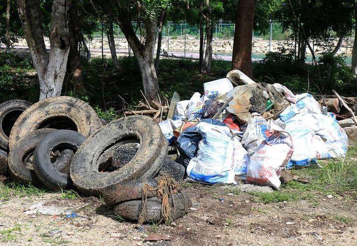 Se recolectaron más de una tonelada de desechos del fondo marino. (Cortesía/SIPSE)
