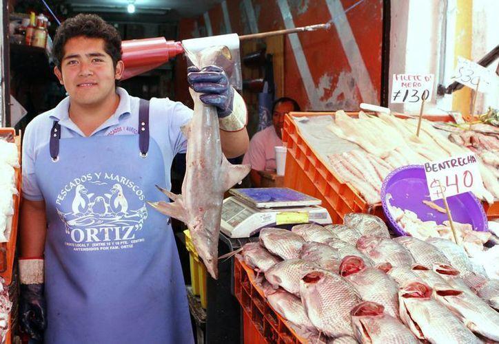 La Conapesca promoverá el mayor consumo de productos marinos en ferias y eventos regionales. (Archivo/Notimex)