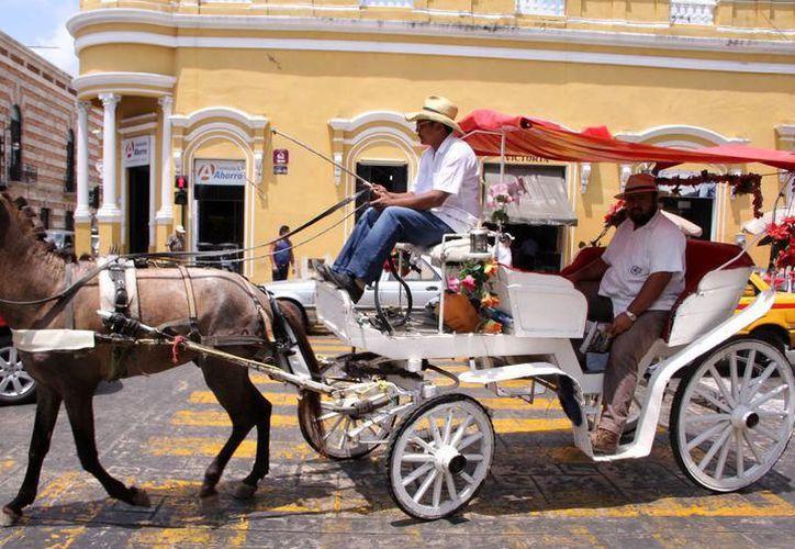 Caleseros de Mérida esperan repunte por la llegada de turistas. (Milenio Novedades)