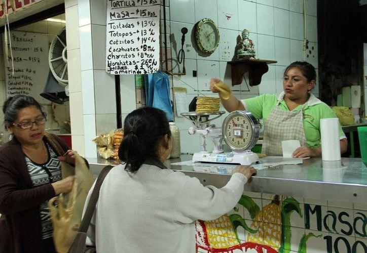 El precio general del kilogramo de tortilla en Mérida es de 16 pesos. (SIPSE)