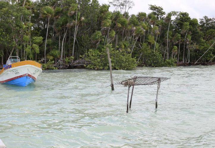 Los pescadores organizados proponen sanciones más severas para proteger las especies en veda. (Harold Alcocer/SIPSE)