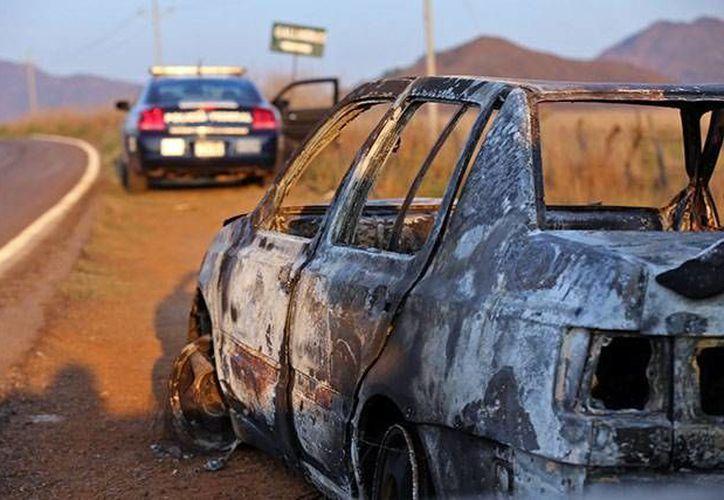 Un enfrentamiento entre sicarios y policías dejó al menos 15 muertos en la carretera Mascota-Puerto Vallarta, Jalisco. (excelsior.com.mx)