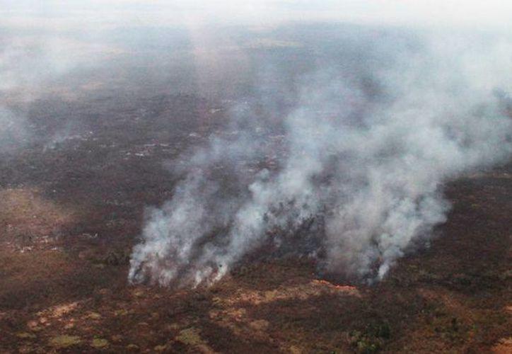 En la gran mayoría de los casos no son causas naturales las que provocan el fuego, sino la acción humana. (Harold Alcocer/SIPSE)