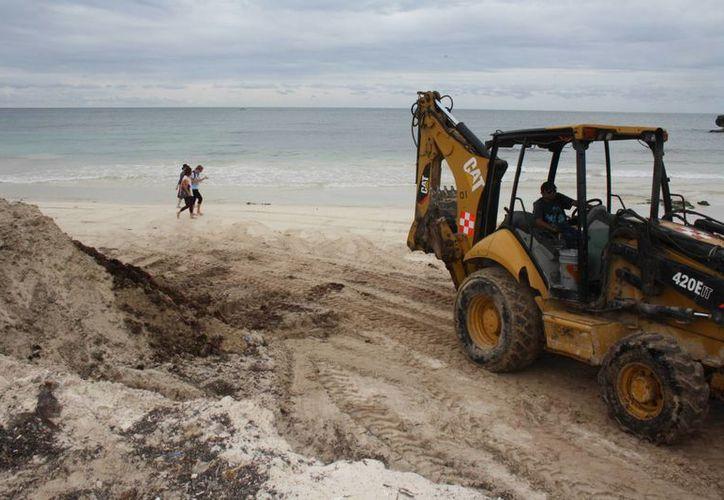 Las costas playeras de Tulum es parte de un programa de limpieza que concluye hasta el 15 de enero. (Sara Cauich/SIPSE)