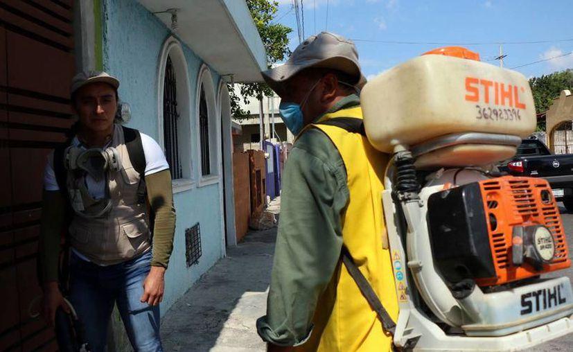 Se preparan para fumigar y abatir al mosco Aedes Aegypti. (Foto: Milenio Novedades)