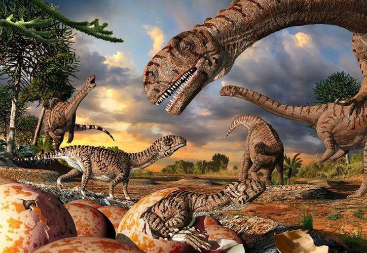 El comienzo de la desaparición de los dinosaurios es anterior al impacto del gran meteorito de Yucatán, aseguran. Foto: Internet