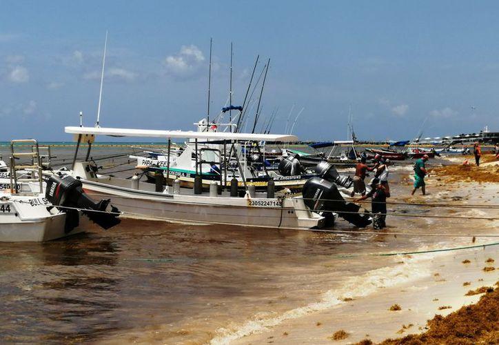 Algunas embarcaciones se encuentran resguardadas en la playa El Recodo. (Octavio Martínez/SIPSE)