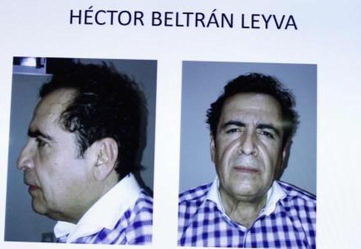 El cártel de los Beltrán Leyva, aliado del cártel de Sinaloa hasta el 2008, fue uno de los principales introductores de cocaína a Estados Unidos. (El Financiero)