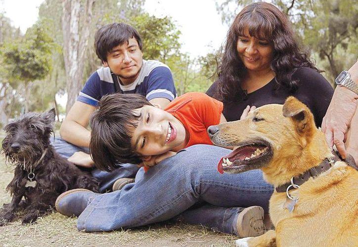 Willy, el perro de la derecha, ha ayudado en la terapia de Darío, el pequeño en la imagen, quien antes no toleraba tener animales cerca. (Excélsior)