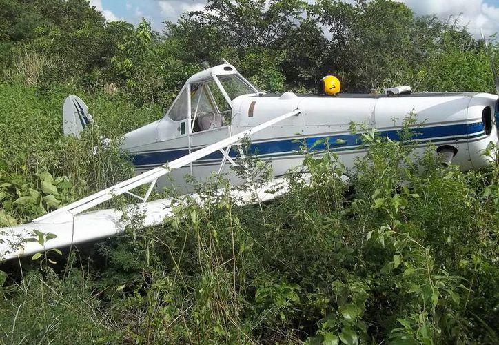 La avioneta Cessna, matrícula XBJAT, terminó dentro de la maleza en Espita. (Milenio Novedades)