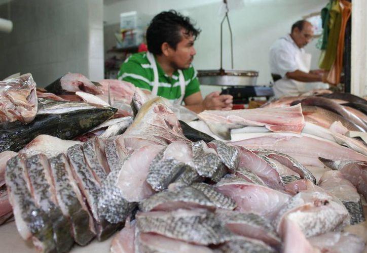 Exhortan a vigilar el consumo de pescados como el mero y el pargo, porque en costas de Cuba ya se ha identificado a estas especies como portadores de ciguata. (Ernesto Neveu/SIPSE)