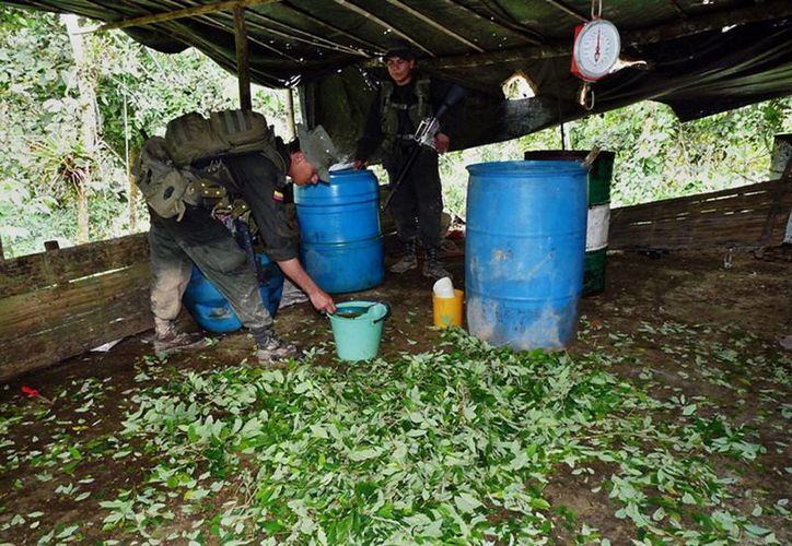 En el laboratorio se incautaron 225 kilos de cocaína pura. (Imagen de archjivo/EFE)