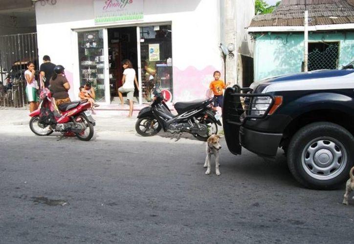 Las dos mujeres y el bebé que viajaban en la motocicleta resultaron únicamente con golpes leves.  (Redacción/SIPSE)
