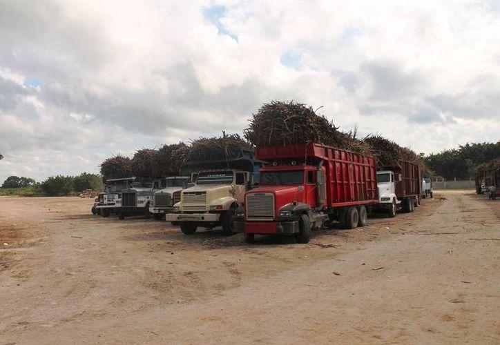 El fin de semana pasado, se suspendieron las labores de la zafra por lluvias. (Edgardo Rodríguez/SIPSE)