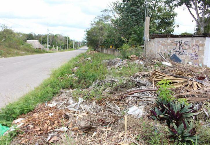 Estas medidas buscan mejorar la imagen de la ciudad y evitar la contaminación.(Benjamín Pat/SIPSE)