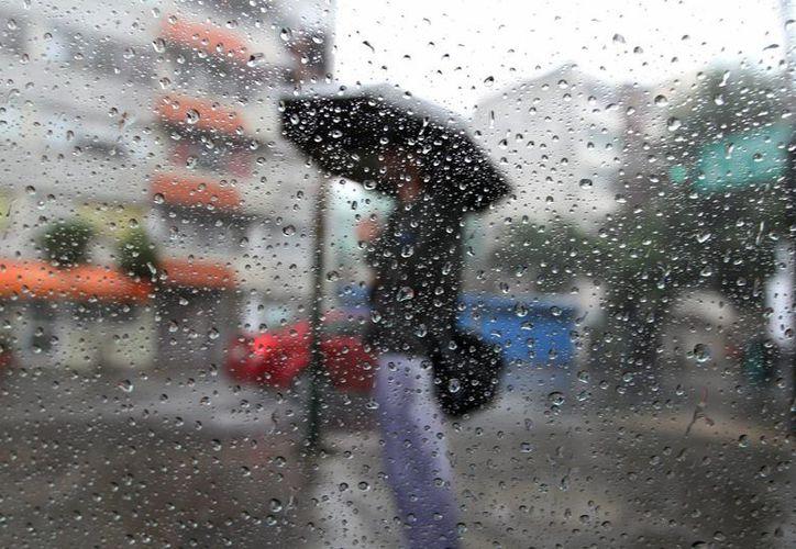 El SMN anuncia lluvias muy fuertes en estados como San Luis Potosí, Hidalgo y Querétaro por la influencia de la tormenta 'Danielle'. (Notimex)