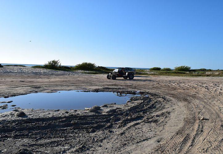 """El nuevo campamento que lleva el nombre de """"Ixpalbarco"""" fue autorizado por la Semarnat. (Gustavo Villegas/ SIPSE)"""