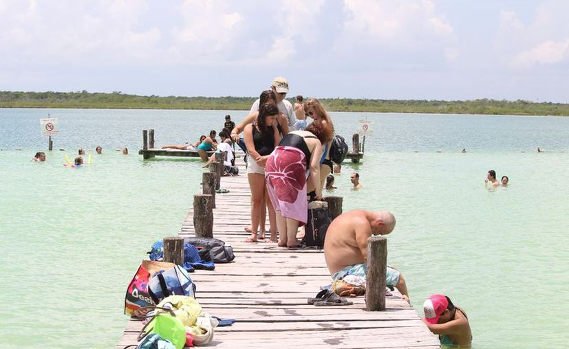 En los alrededores del ecosistema hay especies animales y vegetales que hacen más atractiva la laguna. (Octavio Martínez/SIPSE)