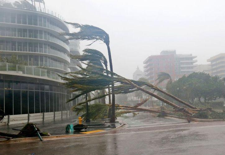 El huracán Irma perdió algo de fuerza y es ahora de categoría 3. (AP).