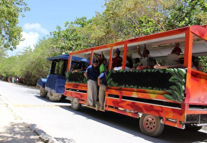 Se han identificado al menos un grupo de 16 personas que trabajan para agencias de transportación de turistas. (Sara Cauich)
