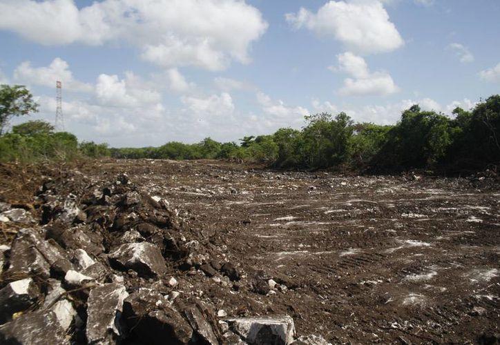El aeródromo de Playa del Carmen, estará en Puerto Aventuras.  Ya iniciaron las labores de desmonte del predio.  (Octavio Martínez/SIPSE)