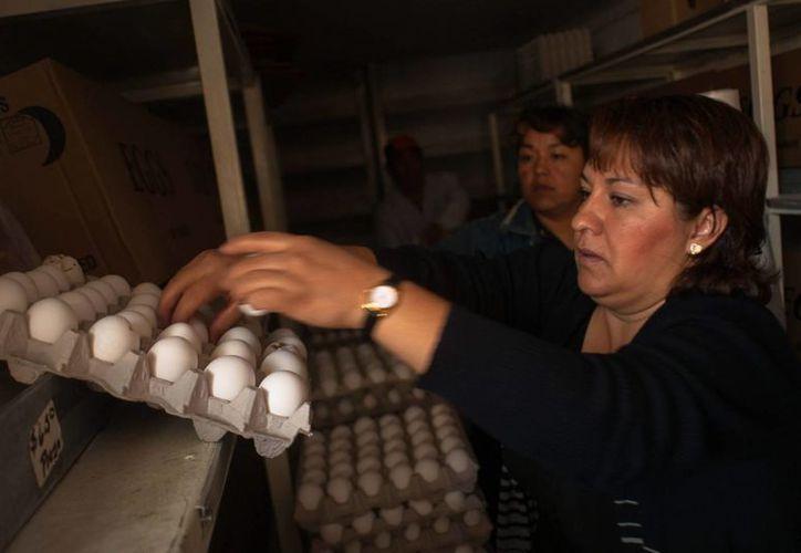 La Profeco ha realizado más de dos mil visitas de supervisión para evitar abusos en los precios del huevo. (Notimex)