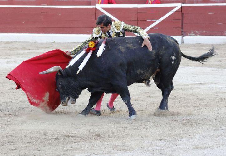 Tarde de triunfo de Joselito Adame en la Mérida: 4 orejas. (Milenio Novedades)