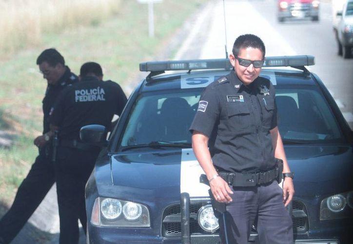 Según el experto Ted Galen Carpenter, la tolerancia del pueblo mexicano hacia la corrupción en la Policía y el Ejército está disminuyendo. (Archivo/Notimex)