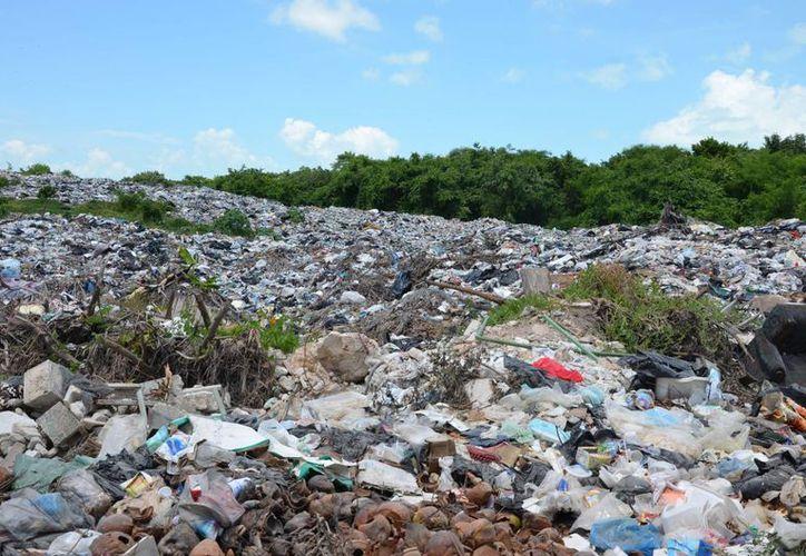A la fecha son tres empresas interesadas para el tratamiento de la basura en la capital del Estado. (Gerardo Amaro/SIPSE)