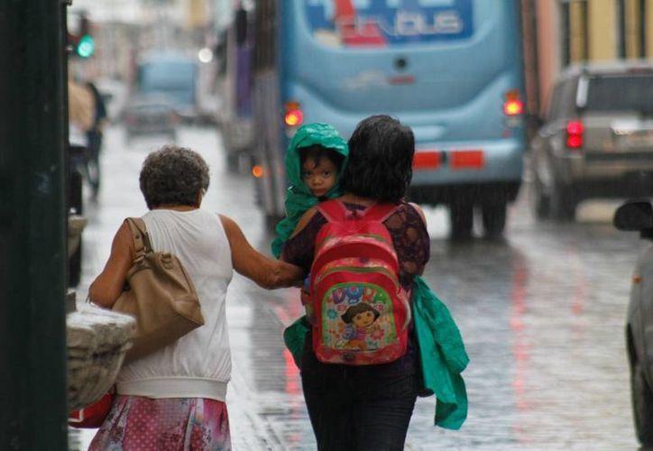 Las lluvias registradas en los últimos días ocasionaron el ligero descenso de temperaturas por las noches en el estado. (César González/SIPSE)