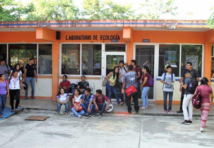 En la entidad hay 78 escuelas de nivel superior entre públicas y privadas. (Carlos Horta/ SIPSE)
