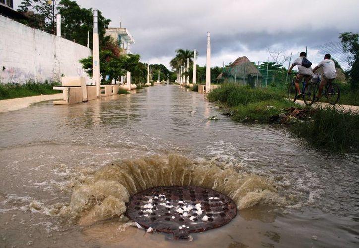 Una coladera de la Quinta Avenida, en la Colonia Colosio, rebosó ayer debido a la lluvia. (Octavio Martínez/SIPSE)