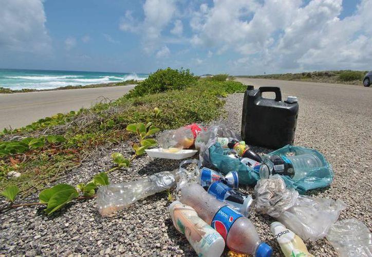 De los 66 kilos de desechos que recolectaron, destacan plásticos, envolturas y envases. (Foto: Contexto/SIPSE)