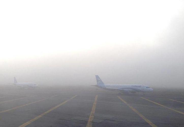 Por medio de las redes sociales circularon fotos de la afectación del banco de niebla en el AICM. (Twitter/@azteca010)