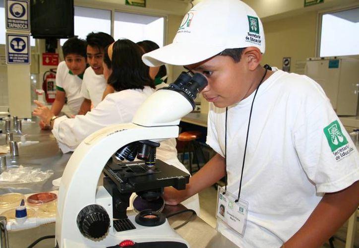 Proyecto Alfa trabaja con estudiantes sobresalientes de Yucatán. (Cortesía)