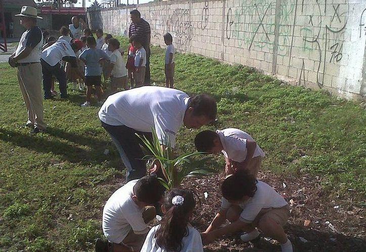Alumnos participan en la siembra de árboles. (Redacción/SIPSE)
