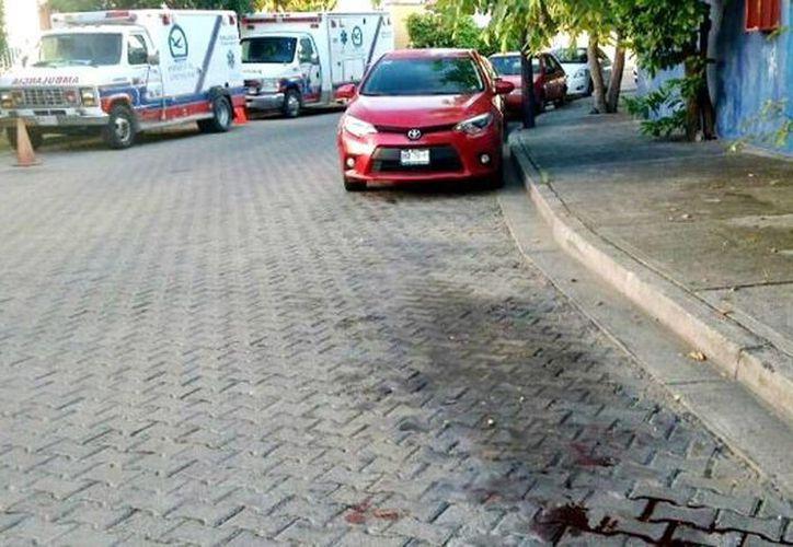 Los cuerpos de cinco hombres y una mujer estaban con los ojos vendados y maniatados con cinta industrial, en Mazatlán, Sinaloa. (24-horas.mx)