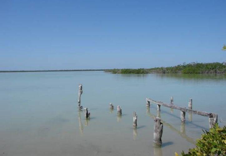 La iniciativa busca el aprovechamiento sustentable del área protegida. (Manuel Salazar/SIPSE)