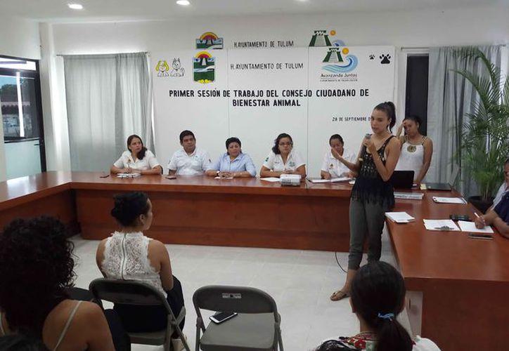 Los integrantes del Comité de Bienestar Animal municipal participaron en la primera sesión del grupo. (Sara Cauich/SIPSE)