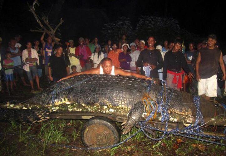 El reptil trajo fama mundial al pueblo de  Bunawan en Filipinas. (Agencias)