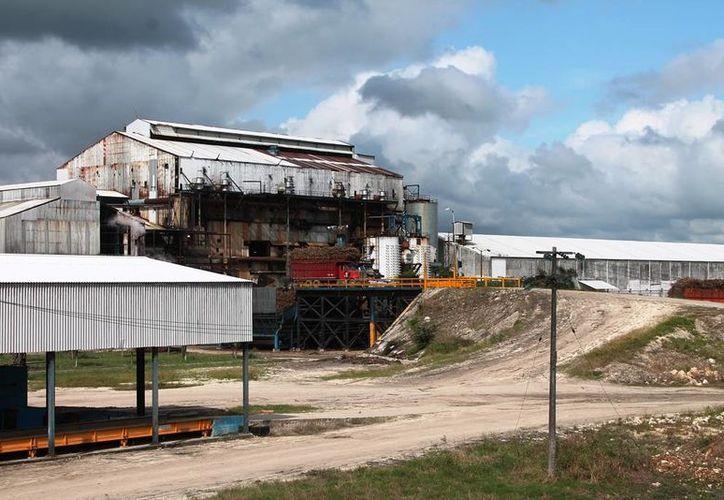 La meta para esta zafra es de 160 mil toneladas de azúcar en el Estado. (Edgardo Rodríguez/SIPSE)